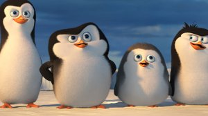 penguins thumb